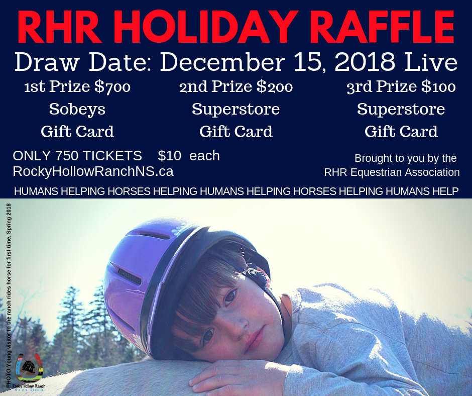 Rocky Hollow Ranch Holiday Raffle 2018 FINAL blue background